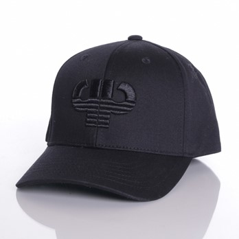 Icon plate curved snapback