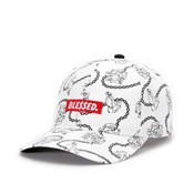 Cayler & Sons - C&s wl ble$$ed curved cap